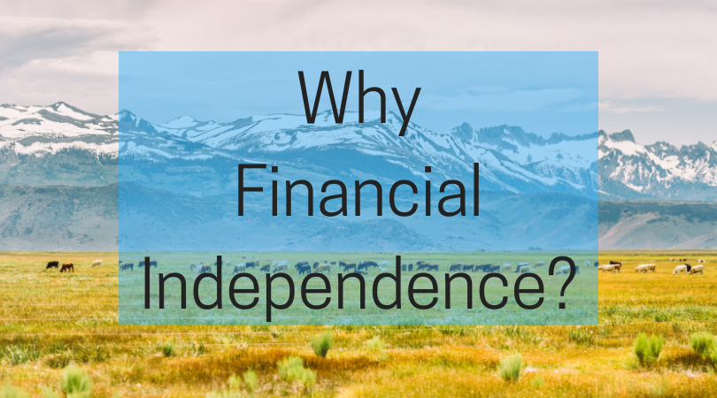 Why Financial Independence?